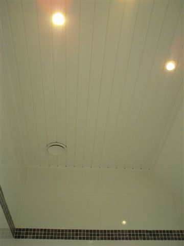 <p>plafond en lambris</p>