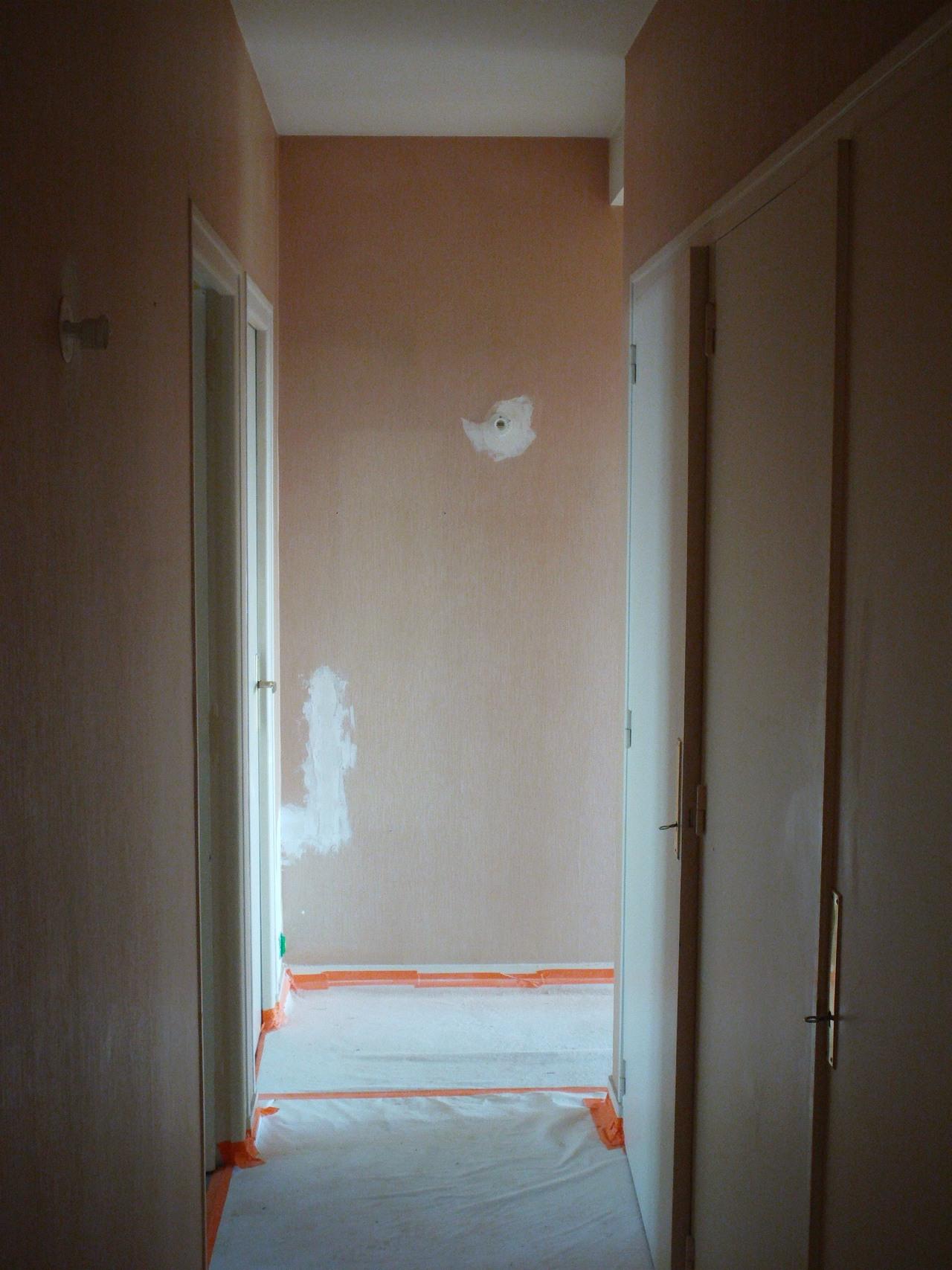 <p>couloir avant</p>